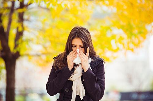 Allergists in Louisville KY