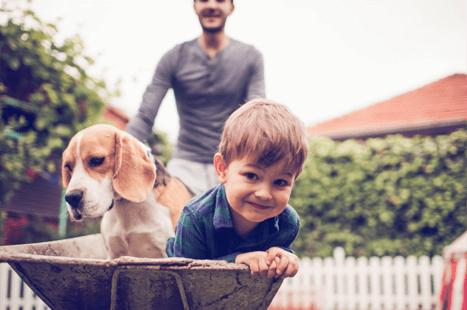man pushing child and dog in wheelbarrow